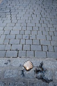 Scallop shell showing the way in Leon.