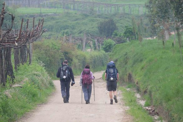 trio walking away
