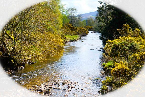 avoca river vignette