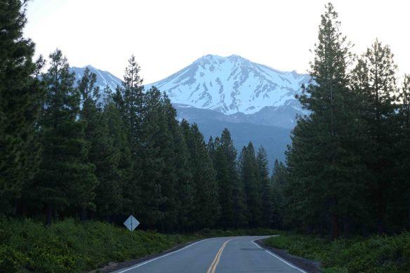 Mount Shasta.1