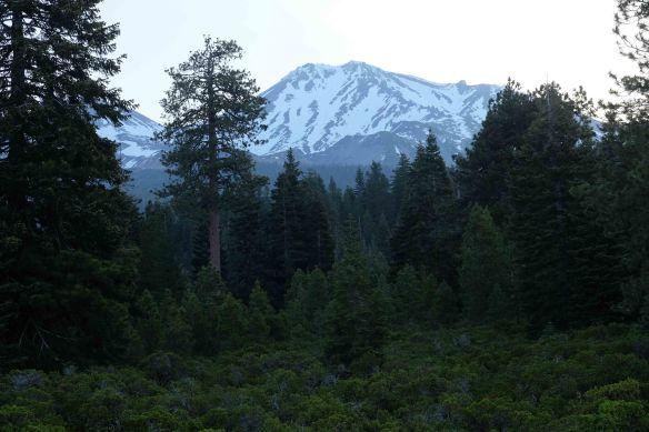 Mount Shasta.2