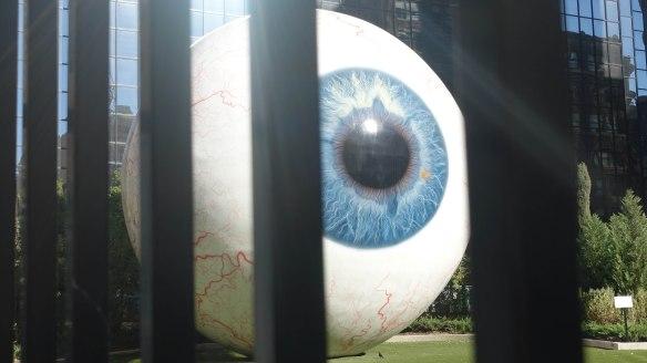eye behind bars