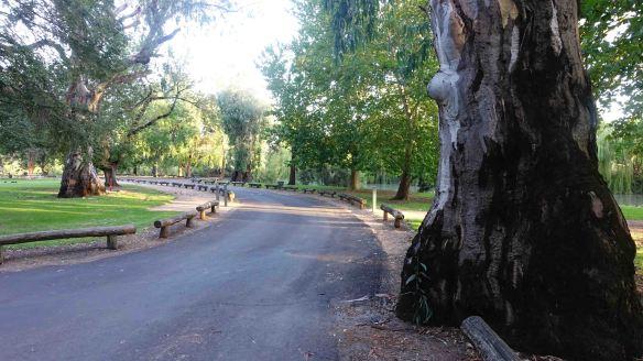Lawson Park 1