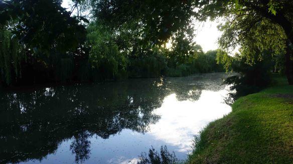 Lawson Park 2