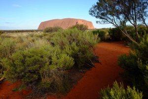 Uluru ws