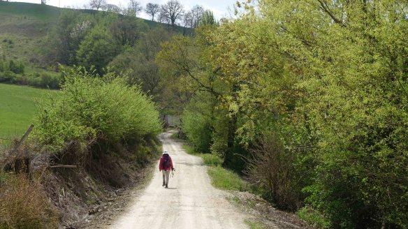 Jen climbing hill rv