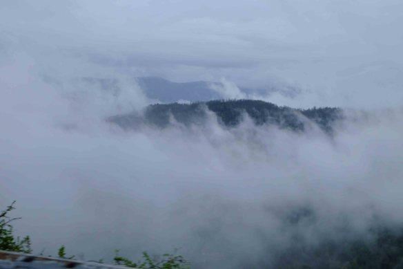 Mist in hills