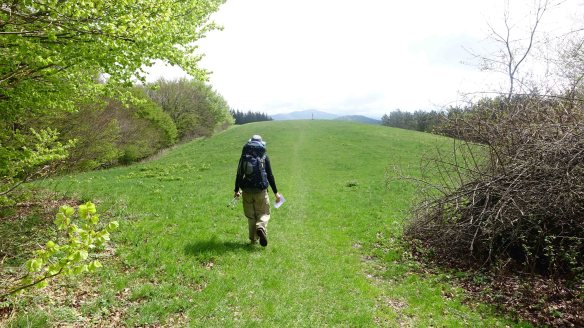 Peter walking up hill