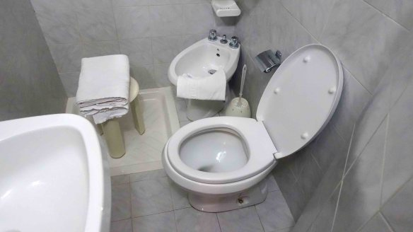 toilet in shower