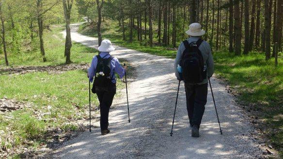 Angie and Ken walking rv thru woods