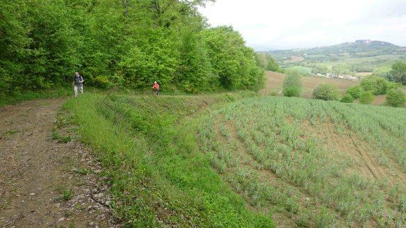 climbing up hill d5