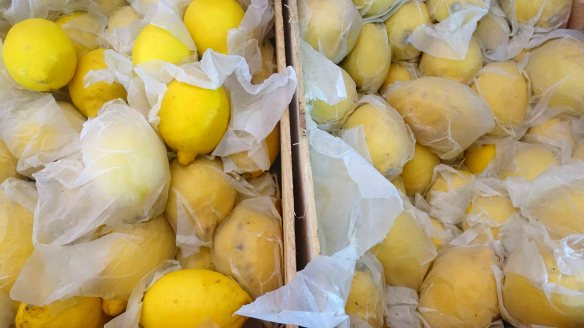 Lemons wrapped