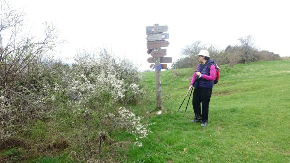 Marie at signpost