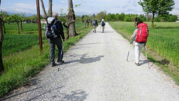 Walking to Citerna