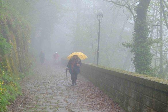 Walking up path.2