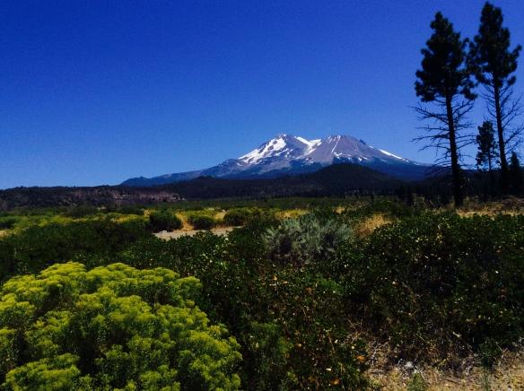 Mount_Shasta_CA.jpg