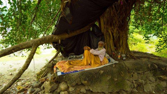 Sadhu by tree Rishikesh
