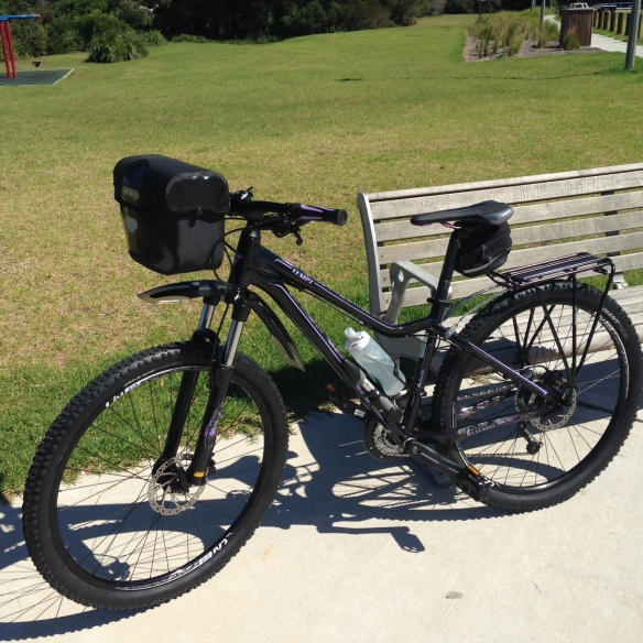 The Camino dream bike