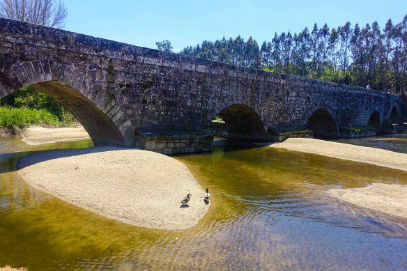 bridge with ducks-1