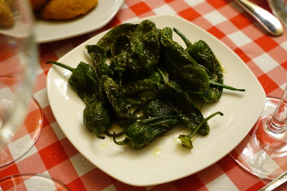Padron peppers-1