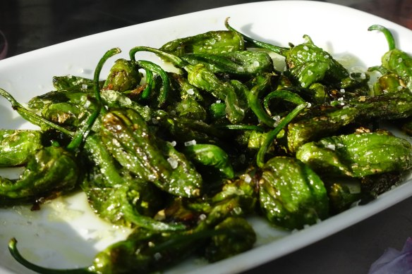 Padron peppers (sangria jiont)-1