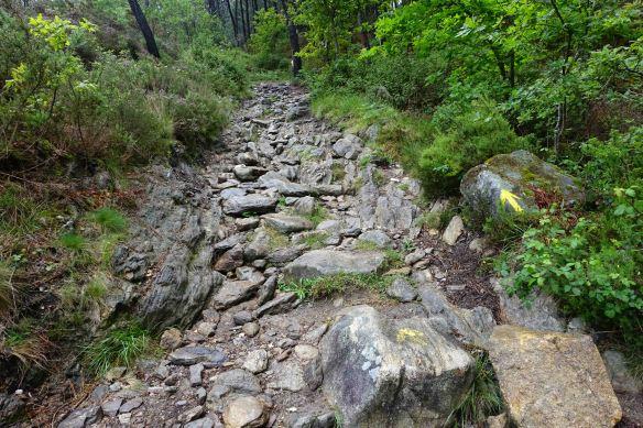 path up big hill-1