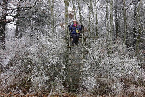 jennifer-on-frozen-high-chair